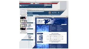 Portofoliu web design